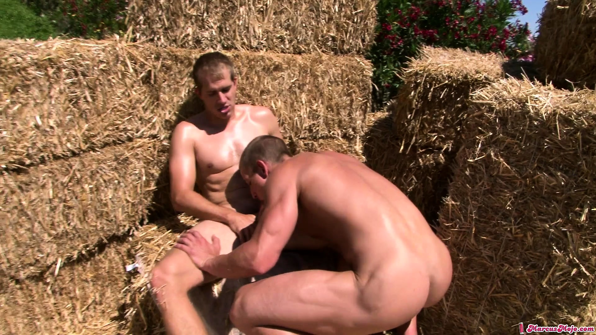 Porno Video of Hard Bodied Country Boys Take Turns Fucking Each Others Cock